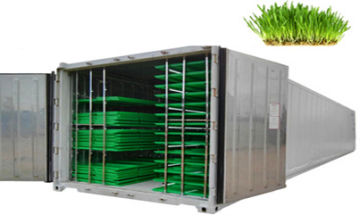 Container (40ft) farms 1000kg / Day